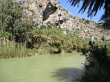 Palms and River at Preveli